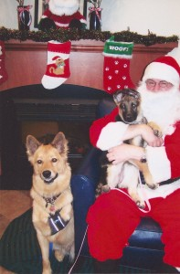 Chuy & Anka with Santa Paws 12/09