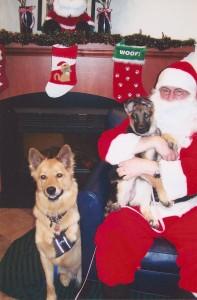 Chuy & Anka with Santa Paws 12/09